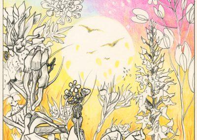 2017 KASSARI TAIMED - THE PLANTS OF KASSARI, tint, pliiats - ink, pencil, 19 x 19 cm, Kaia Otstak