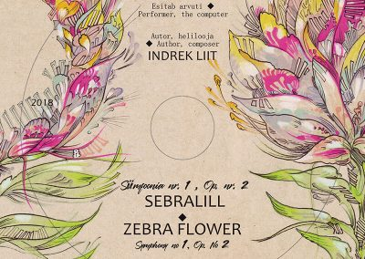 2018 SEBRALILL - ZEBRA FLOWER (Indrek Liit), CD design and illustration 01, Kaia Otstak