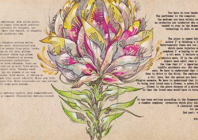2018 SEBRALILL - ZEBRA FLOWER (Indrek Liit), CD design and illustration 03, Kaia Otstak