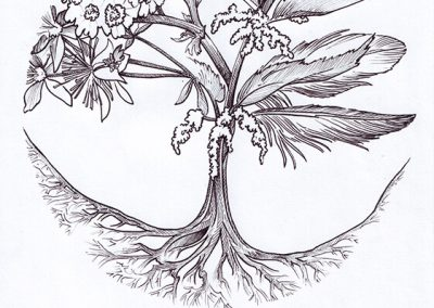 2019 METSAEMAND logo, tint - ink, A4, Kaia Otstak